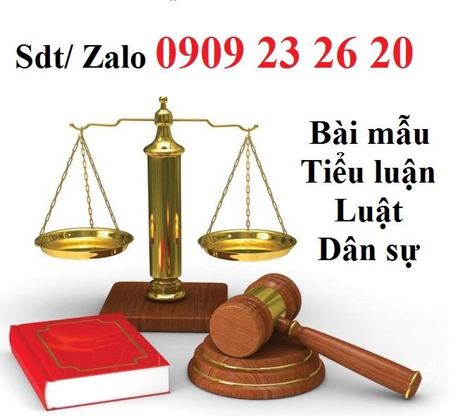 Làm tiểu luận luật dân sự giá rẻ - Bài mẫu tiểu luận luật